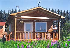 Lupine Cabin Exterior